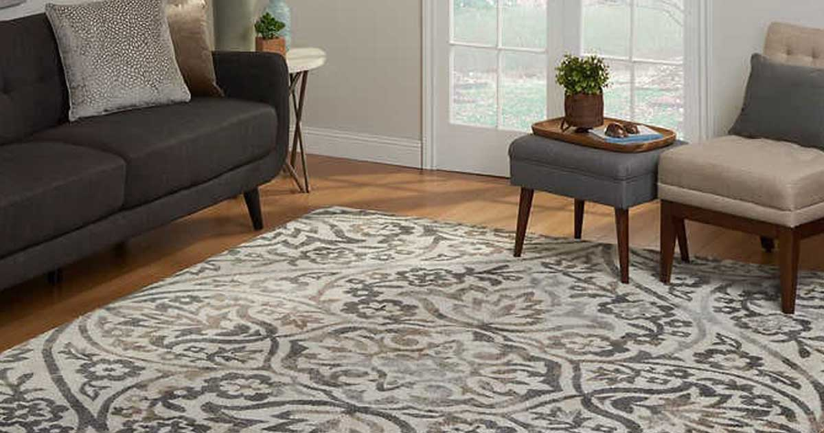 Image of: Designer Area Rugs From 49 99 On Costco Com Lots Of Styles Sizes Hip2save