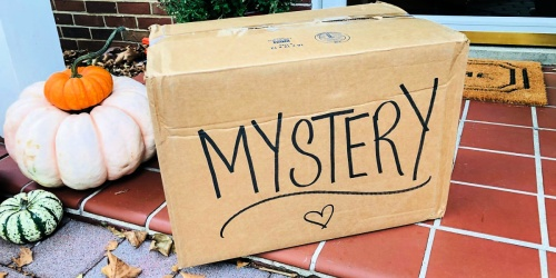 Get a Mystery Box Filled w/ $345 Worth of Name Brand Apparel for Around $53 Shipped