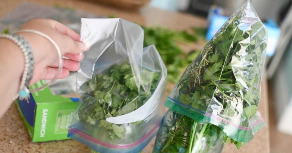 placing ziploc bags over mason jars