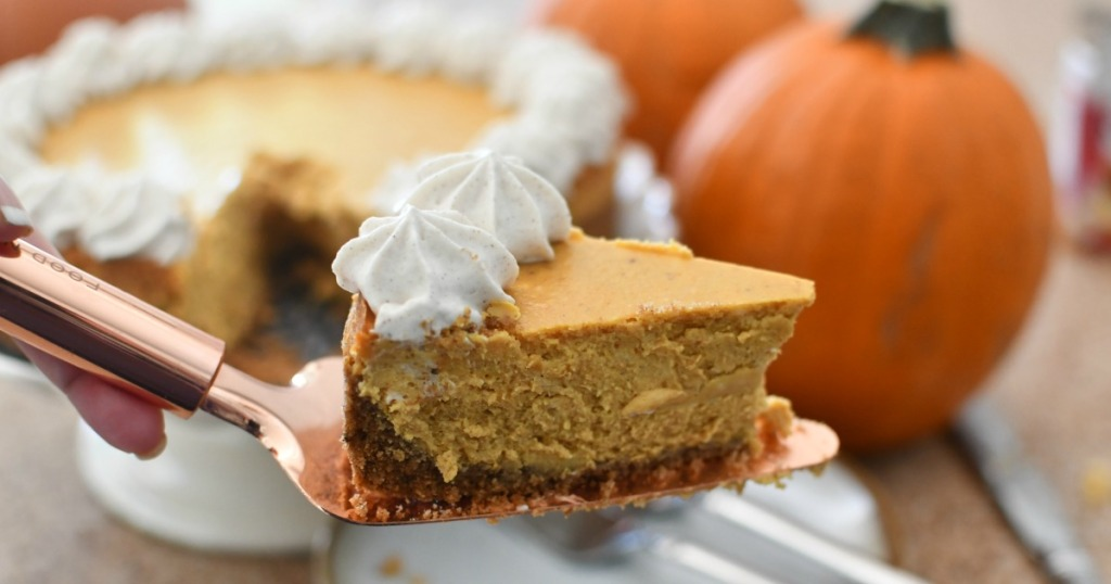 pumpkin cheesecake on a serving spatula