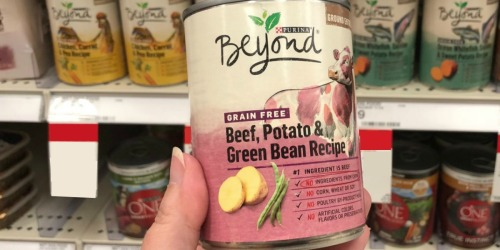 Purina Beyond Grain-Free Dog Food Cans 12-Count Only $10 Shipped on Amazon