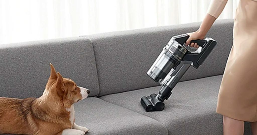 woman vacuuming her couch with Corgi dog sitting on it