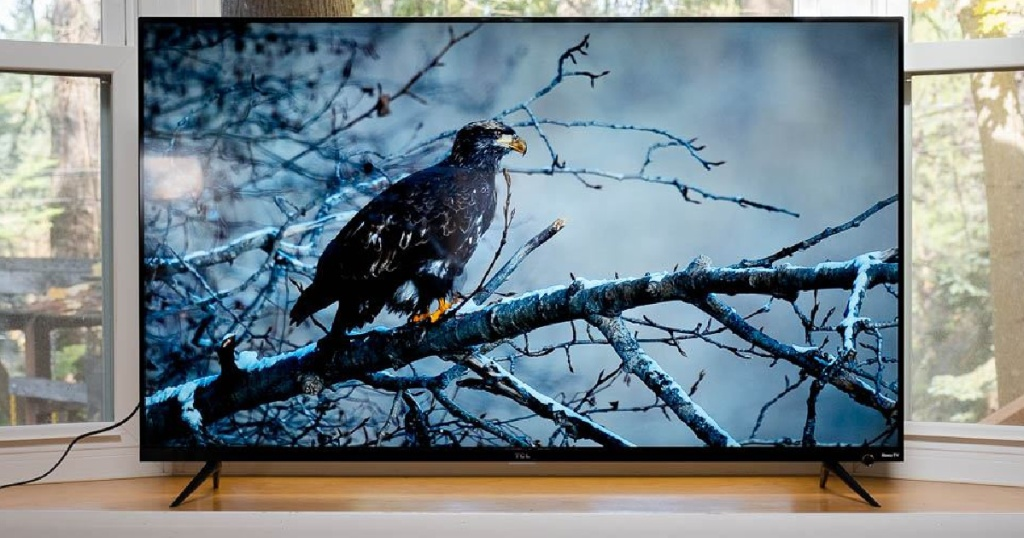 """tcl 75"""" tv with crow on screen"""