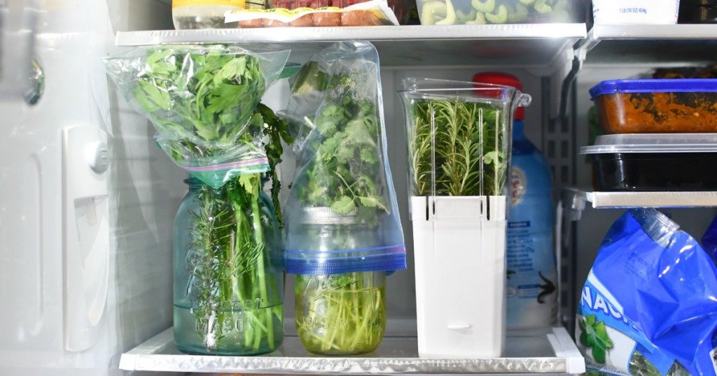 two ways to keep herbs fresh in the fridge for weeks
