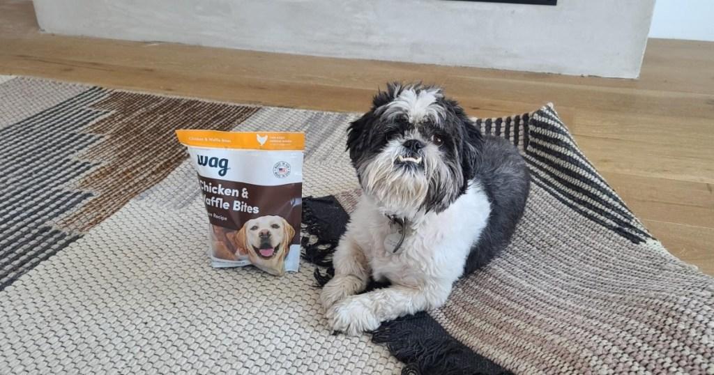 dog sitting next to bag of treats