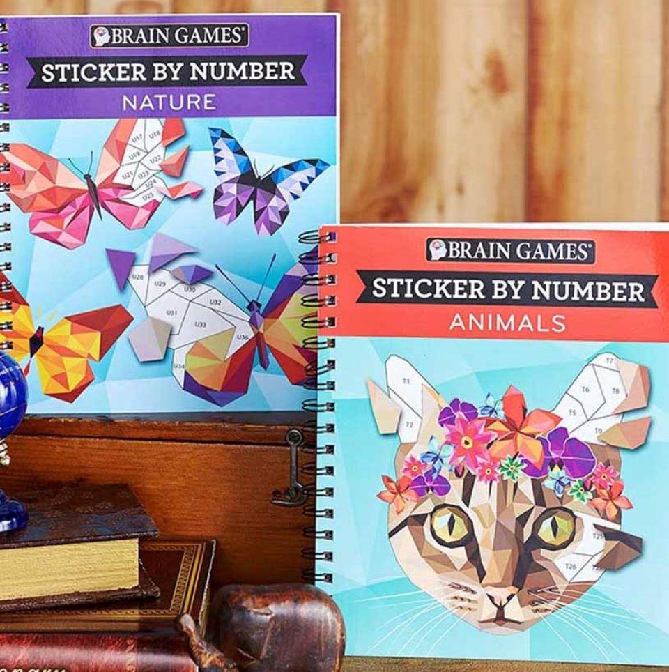 two Brain Games sticker books