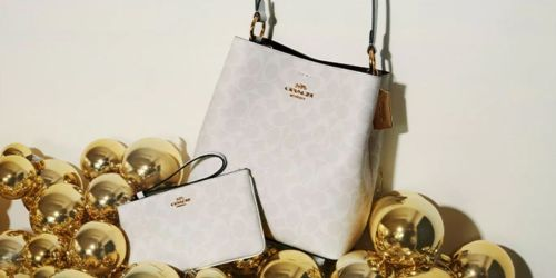Coach Bucket Bag Only $119 Shipped (Regularly $398) + Up to 75% Off Totes, Wallets & More