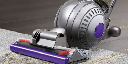 Dyson Ball Animal 2 Upright Vacuum Only $299.99 Shipped on BestBuy.com (Regularly $500)