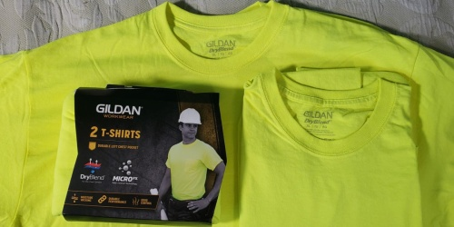 Gildan Men's T-Shirt 2-Packs from $4.75 on Amazon (Regularly $15)
