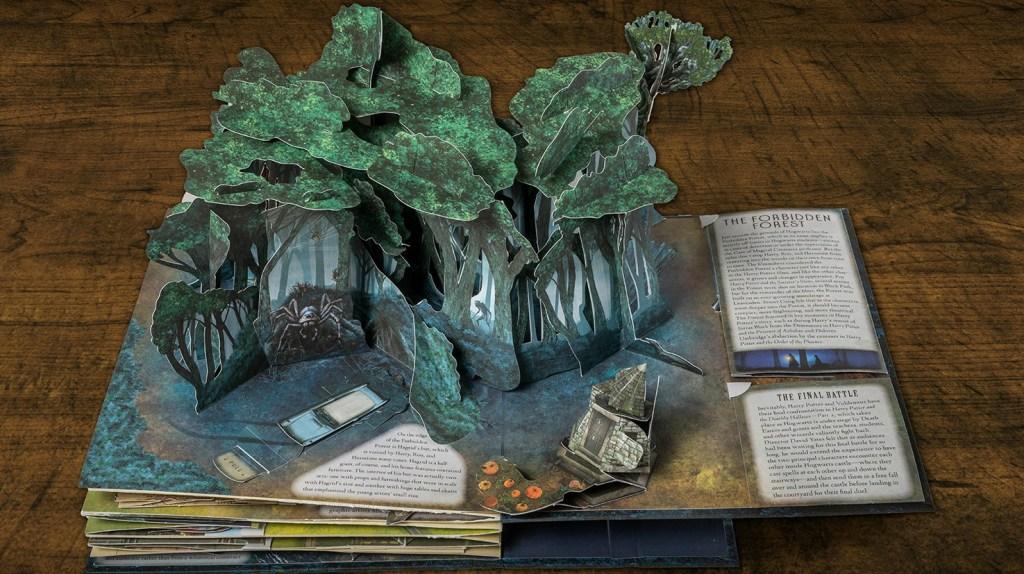 Harry Potter Forbidden Forest-2