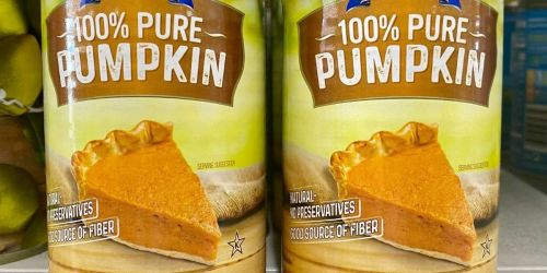 Natural Canned Pumpkin Puree Just $1 at Dollar Tree
