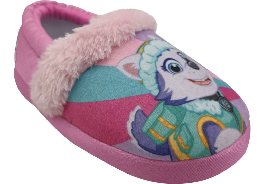 Paw Patrol slipper with Skye on it