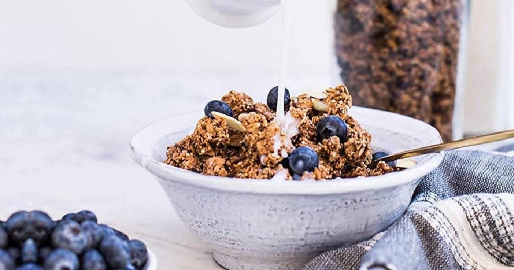 bowl of blueberry granola