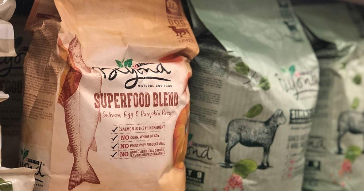 bags of Purina Beyond Dog Food on a store shelf