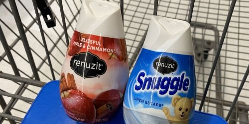 New $2/6 Renuzit Air Fresheners Coupon | Only 47¢ Each After Cash Back at Walmart
