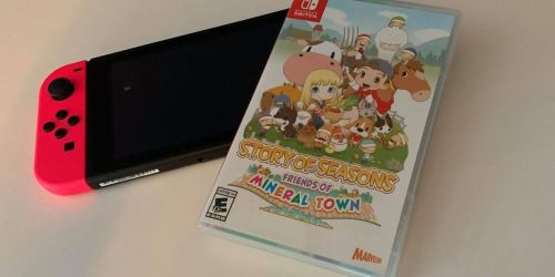 Story of Seasons: Friends of Mineral Town Nintendo Switch Game Only $19.99 on Amazon (Regularly $40)