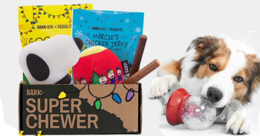 a dog is playing with a toy and laying next to a box of treats and toys