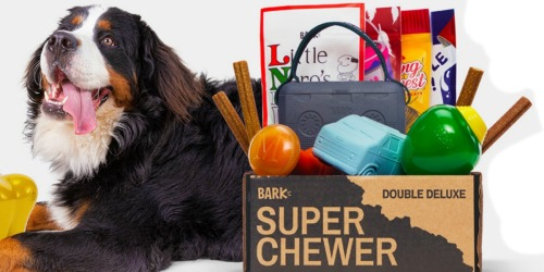 FREE Super Chewer Box With Subscription Purchase ($45+ Value)