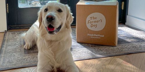 50% Off Fresh Pet Food From The Farmer's Dog + Free Delivery