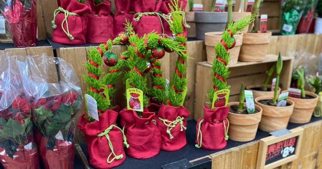 Pohon Natal Terinspirasi Grinch