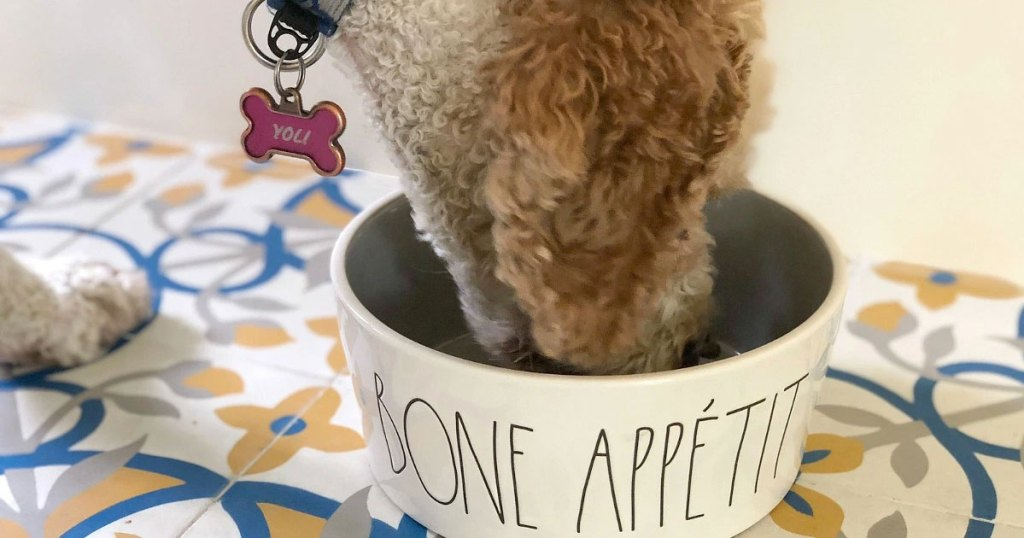 dog with pink name tag on collar bending down to eat food out of dog bowl that says bone appetit