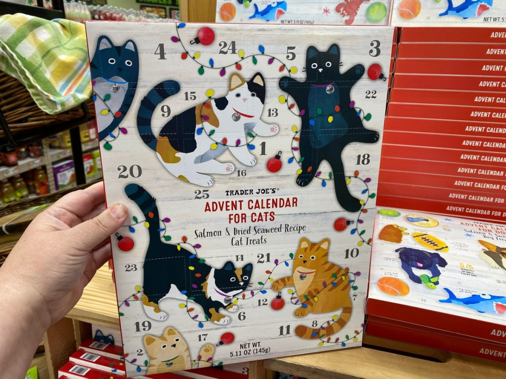 kotak pegangan tangan dengan camilan kucing yang disiapkan sebagai kalender munculnya
