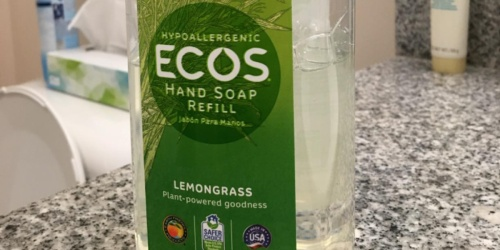 Hypoallergenic Hand Soap 32-Ounce Bottle Only $2.92 on Amazon (Regularly $7)