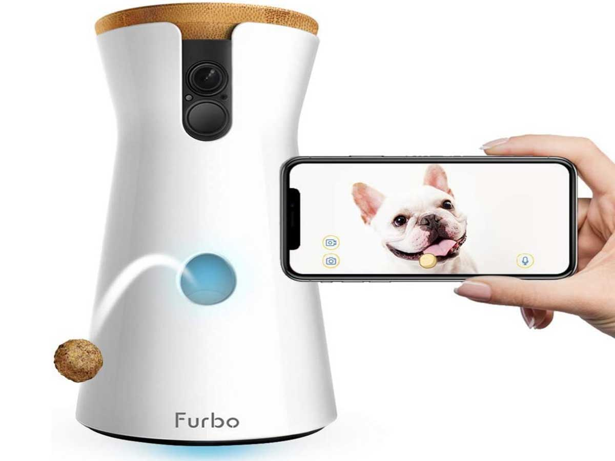 stock image of pet camera and cell phone