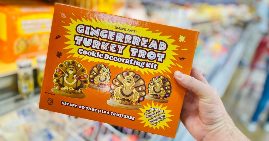 gingerbread turkey kit in box in hand at trader joes