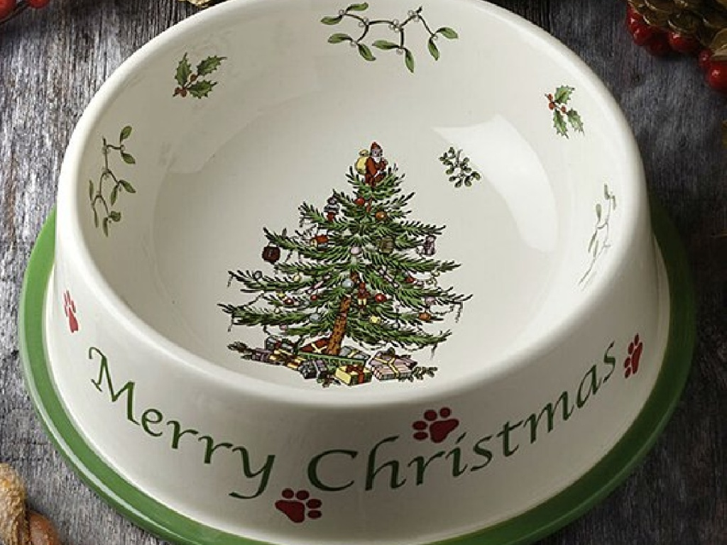 ceramic pet bowl that says Merry Christmas on it