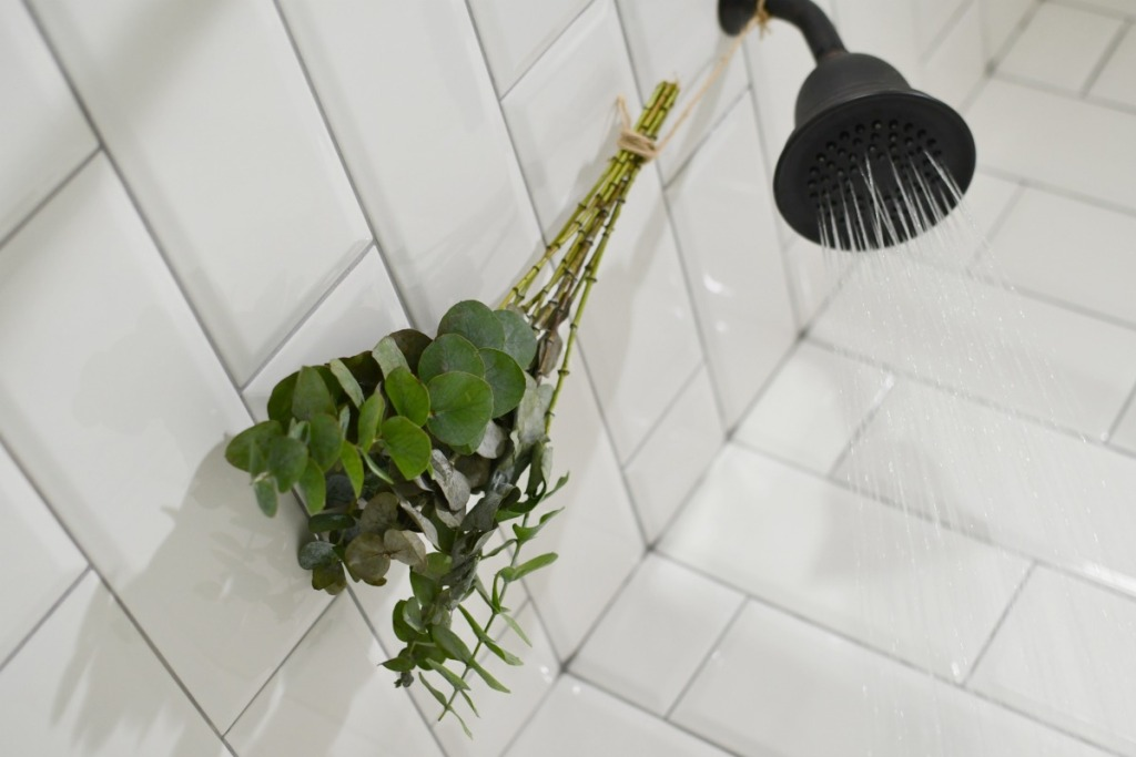 steam shower with hanging eucalyptus