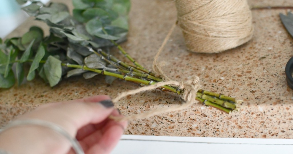 tying twine to eucalyptus