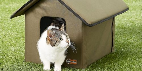 Outdoor Cat Houses from $27.99 on Chewy.com + New Customers Save 50% Off Autoship Orders!