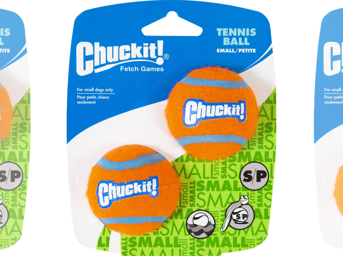 pack of two small orange and blue chuckit brand tennis balls for dogs