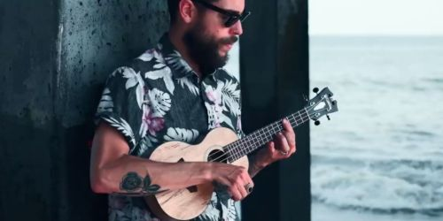 D'Angelico Bayside CS Ukulele Only $59.99 Shipped on Target.com (Regularly $150)
