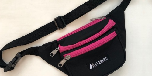 Everest Waist Pack Only $3.99 on Amazon (Regularly $10)
