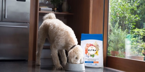 Nutro Ultra Dog Food 30-Pound Bag Only $32.99 on Target.com (Regularly $60)