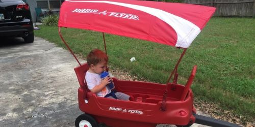 Radio Flyer Wagon Canopy Only $9.97 on Amazon (Regularly $40)