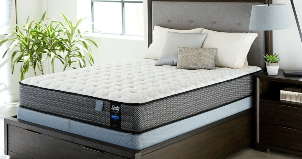 sealy mattress on a box frame in a bed room