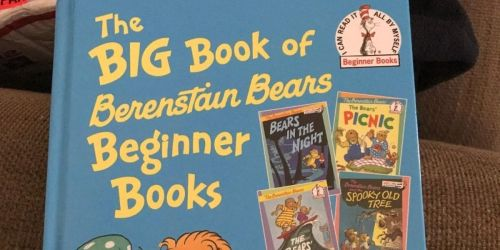 The Big Book of Berenstain Bears Only $6.71 on Amazon (Regularly $17)