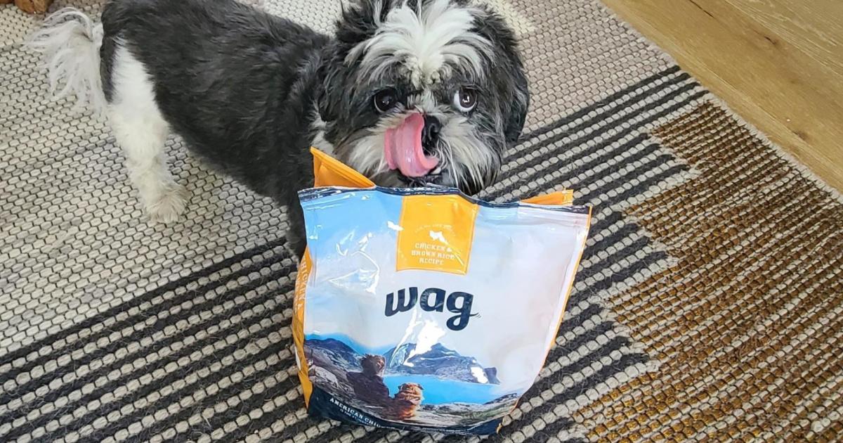 dog standing on rug behind bag of dog food