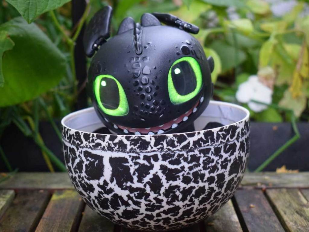 toothless dragon in an egg