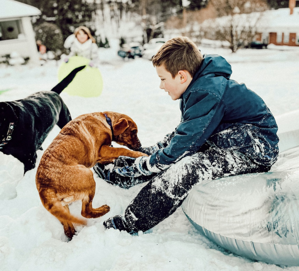 boys wearing kids snow pants playing with dogs in snow