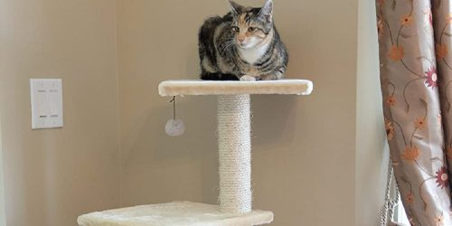 Armarkat 52″ Cat Tree Only $49.55 Shipped on Petco.com (Regularly $85)