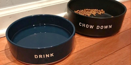 Pet Bowls from $2.79 on Target.com w/ Free Store Pickup (Regularly $8+)