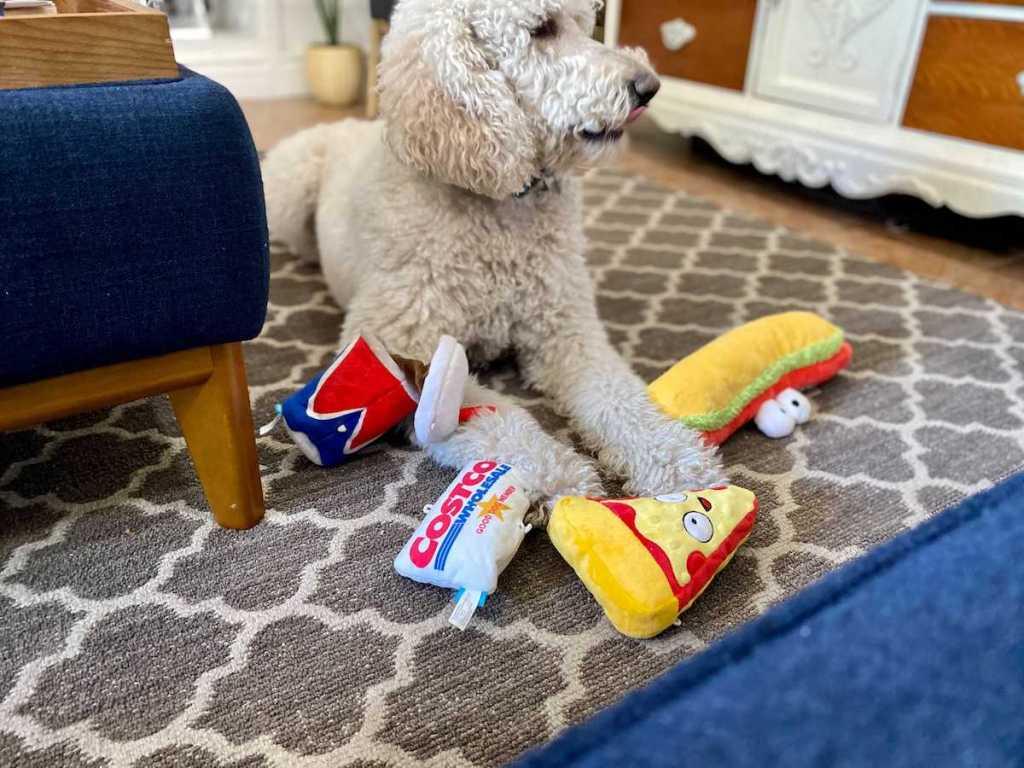 Costco Dog Toys with Lina's Dog