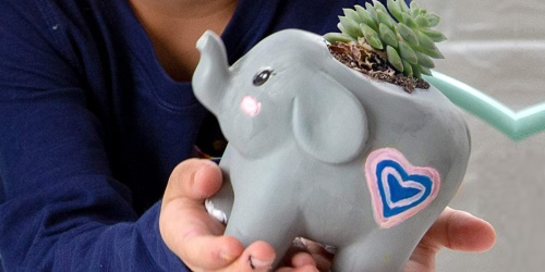 Paint Your Own Elephant Planter Only $4.99 on Amazon (Regularly $10)