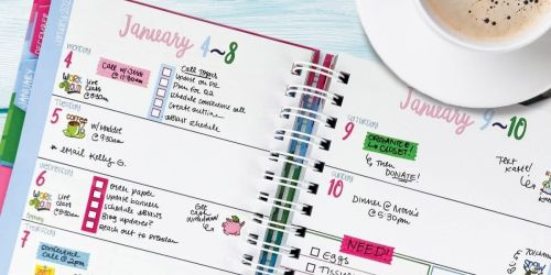 Denise Albright Studios Binder Planner Only $8.97 Shipped