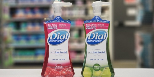 Dial Antibacterial Foaming Hand Soap 8-Pack Only $13.98 Shipped on Amazon | Just $1.75 Per Bottle