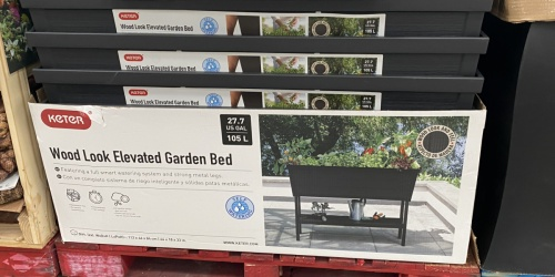 Keter 27.7-Gallon Elevated Garden Bed Only $89.98 at Sam's Club | In-Store & Online